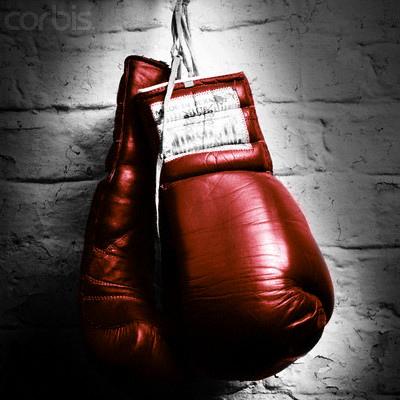 Carlson Gracie Indianapolis Jiu Jitsu Boxing Class