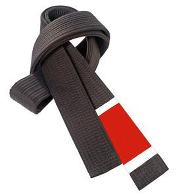 Brazilian Jiu Jitsu Black Belt